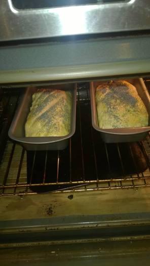 bread poppy