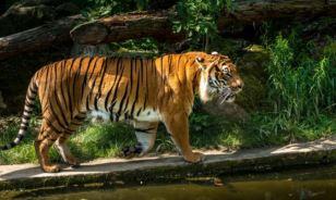 prague zoo 2