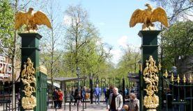 amsterdam zoo3